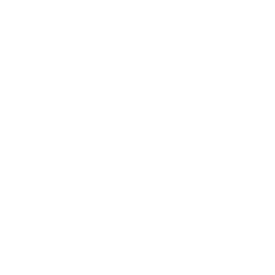 SCHWARZE ROSE Craft Beer